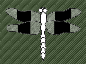 diagram of banded dragonfly with white body